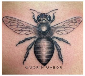 Tattoos - black and gray realistic bee on sternum - 104749
