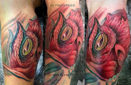 Tattoos - In progress color realistic octopus and sealife half leg sleeve tattoo - 112103