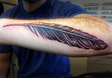 Tattoos - Realistic black and gray with color accent feather on forearm - 112094