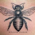 black and gray realistic bee on sternum Tattoo Design Thumbnail
