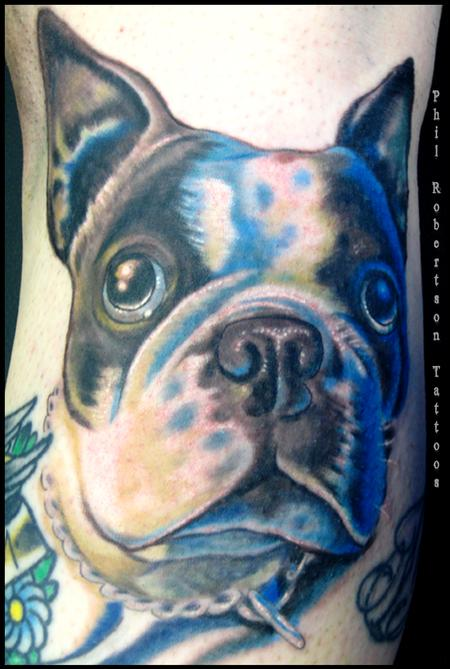 Tattoos - Boston terrier color tattoo - 56230