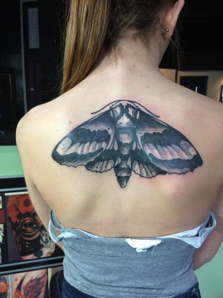 Tattoos - Moth - 124955