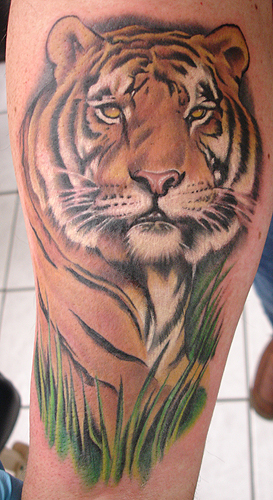 tattoo tiger. Tattoos? tiger rrrrrrrr