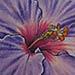 Tattoos - Purple Flower Tatoo - 35274