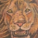 Tattoos - King of the jungle - 3933