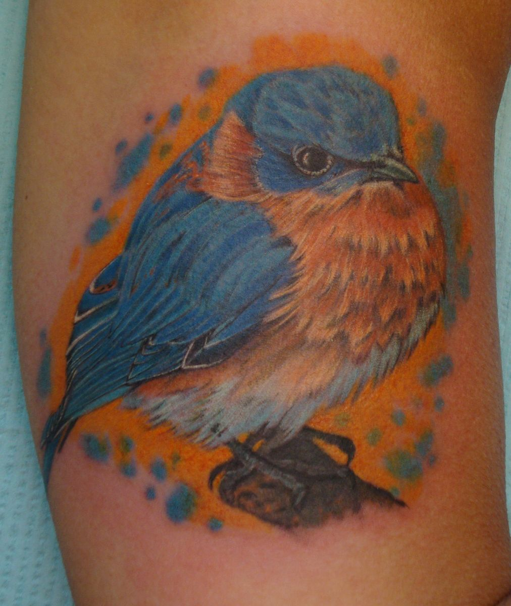 Eastern Bluebird Tattoo by Larry Brogan