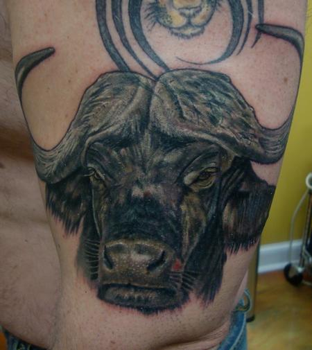 Cape Buffalo Tattoo Design Thumbnail