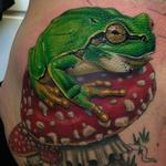 Tattoos - Frog and Amanita Muscaria - 103815