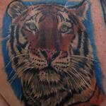 Tattoos - Tiger Portrait - 106831