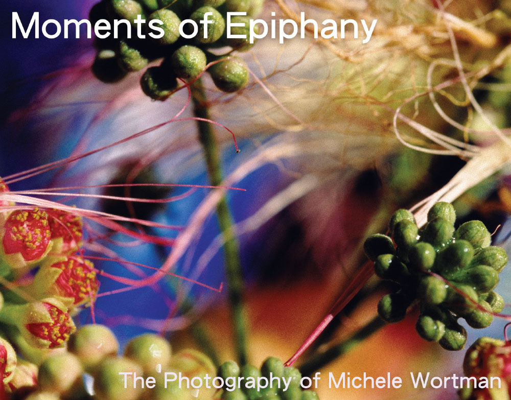 Moments of Epiphany