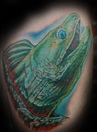 Evan Olin - moray eel