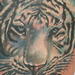 White Tiger Tattoo Tattoo Design Thumbnail