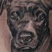 Tattoos - Dog Portrait - 98957