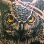 Tattoos - Owl Tattoo - 112308
