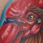 Tattoos - Rooster Tattoo - 117629