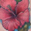 Tattoos - Hibiscus tattoo - 75978