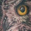 Owl Tattoo Tattoo Design Thumbnail