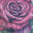 Tattoos - Rose and Violet tattoo - 92129