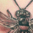 tattoo galleries/ - Wasp with 6 wings tattoo - 79925