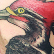 Tattoos - Woodpecker tattoo - 92144