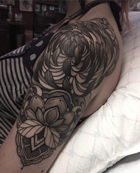 Laura Jade - Black and gray ornamental chrysanthemum