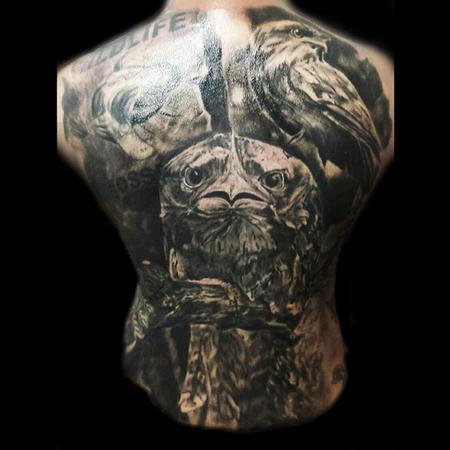 Tattoos - Tawny Frogmouth Back piece - 106640