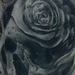 Skull and Roses Tattoo Design Thumbnail