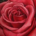 Rose Tattoo Tattoo Design Thumbnail