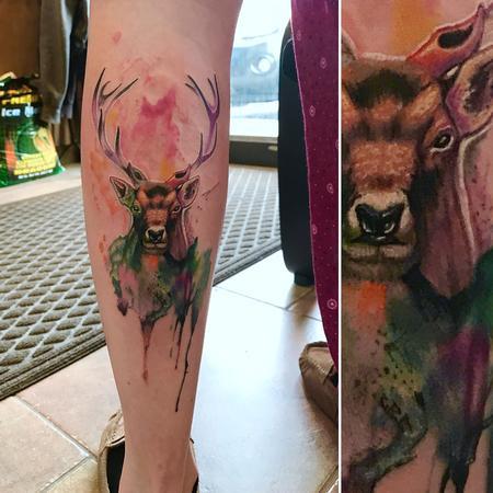 Saint Karlos - watercolor deer
