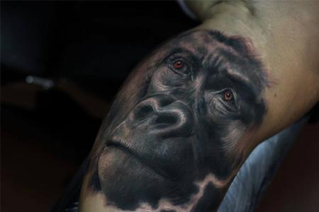 Tattoos - Gorilla - 101782