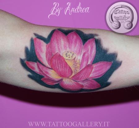 loto Design Thumbnail