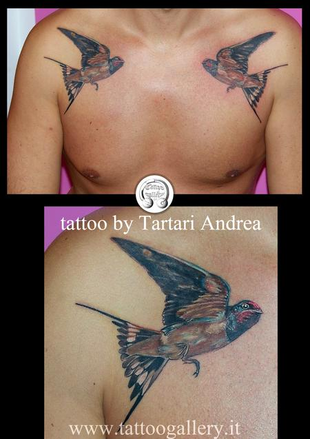Tattoos - tatuaggio rondini,tattoo swallow - 84581