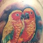 Pappagalli Tattoo Design Thumbnail