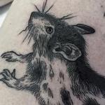 Rat Tattoo Design Thumbnail