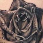 Black rose Tattoo Design Thumbnail