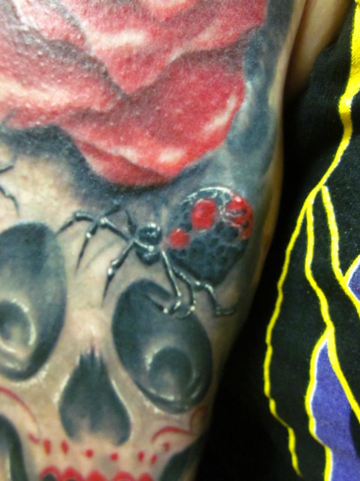 Tattoos - spider - 66630
