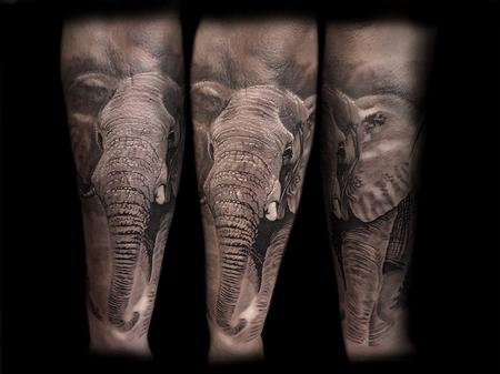 Tattoos - BNG Elephant  - 127257