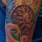 Tattoos - Ressurection Ferns - 100456