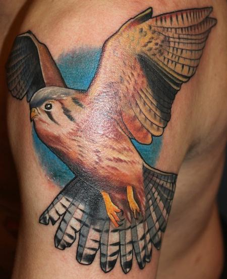 Tattoos - Hawk - 89614
