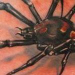 Black Widow Tattoo Design Thumbnail