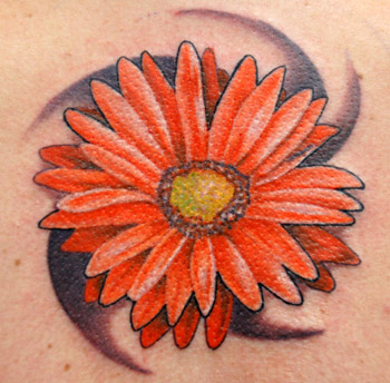 Daisy Tattoo Designs on Tattoos   Trent Edwards   Page 10   Gerber Daisy