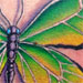 Tattoos - butterfly on back - 28215