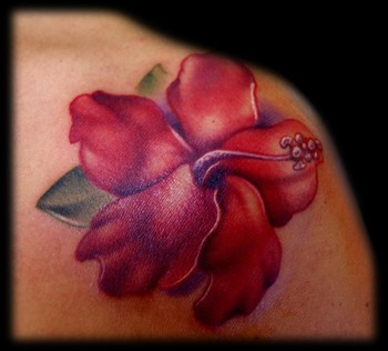 Hibiscus Flower Picture on Tattoo Gathering   Tattoos   Flower   Red Hibiscus Flower Tattoo
