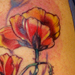 Tattoos - Poppies Tattoo - 17156