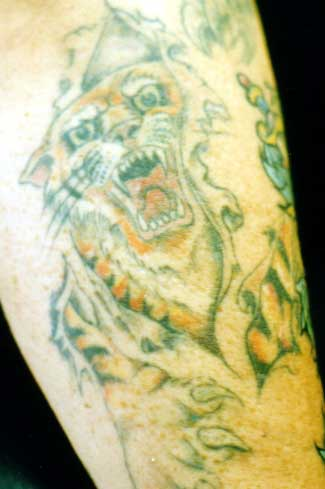 Really bad tattoo - Skin Rip Tiger