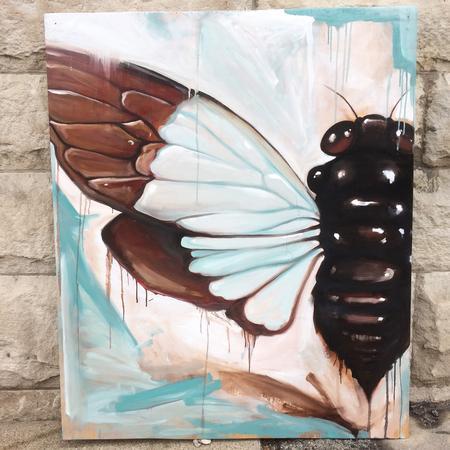 Chuck Day - Cicada