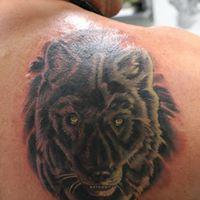 Tattoos - Realistic Wolf - 130925