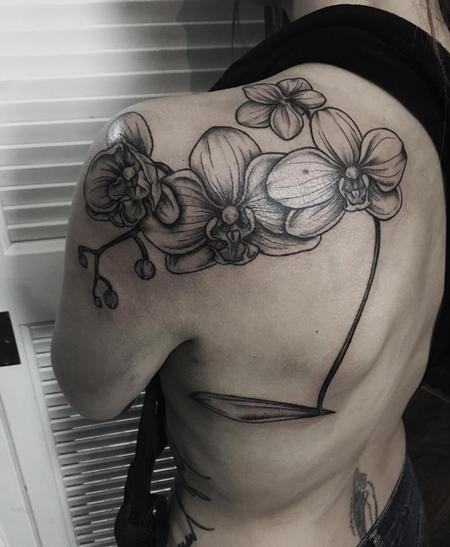 Tattoos - Orchids - 138281