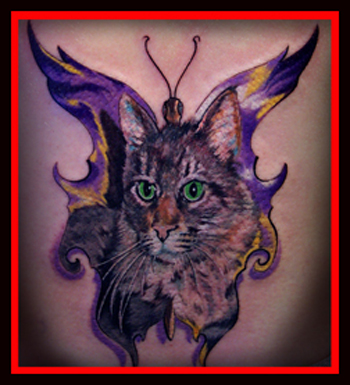 Tattoos - BUTTERFLYING CAT !! - 21304