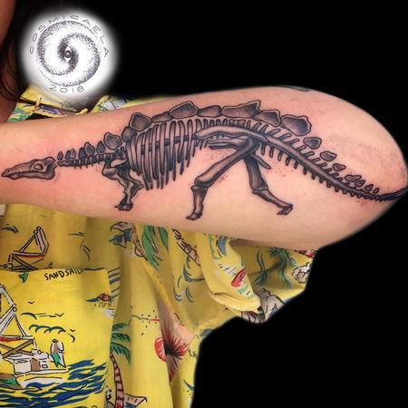 Tattoos - Stegosaurus Skeleton  - 136122